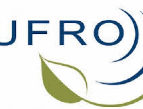IUFRO-EFI Young scientists Initiative